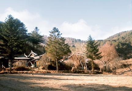 농암사당(전경)