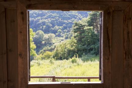 창 너머로 보이는 풍경