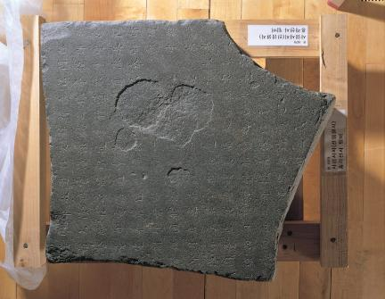 탑비 비신 (국립춘천박물관 소장)