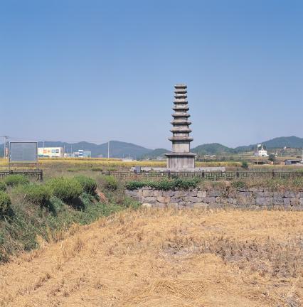 멀리서 바라본 정산 서정리구층석탑