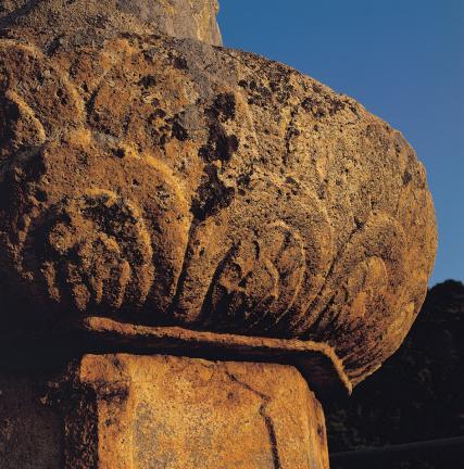 여래좌상 대좌 상대의 연꽃 무늬