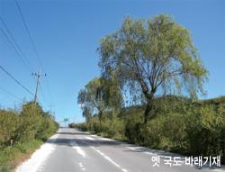 옛 국도 바래기재
