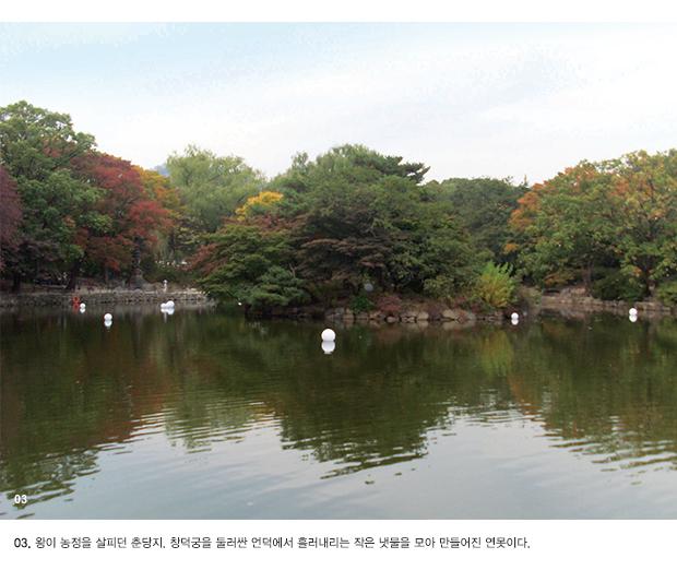 03.'왕이 농정을 살피던 춘당지. 창덕궁을 둘러싼 언덕에서 흘러내리는 작은 냇물을 모아 만들어진 연못이다.