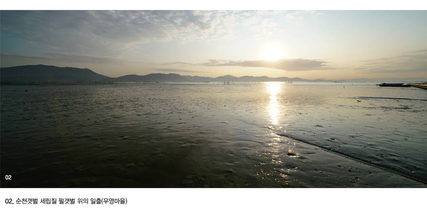 02.순천갯벌 세립질 펄갯벌 위의 일출(우영마을)